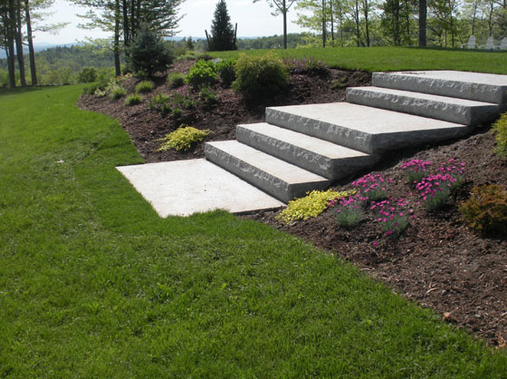 Landscaping Project By Jm Landscaping Steps Plants